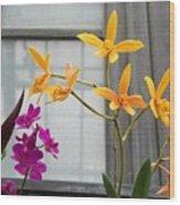 Yellow Orange And Purple Flowers Wood Print