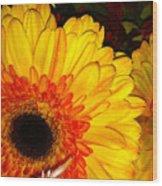 Yellow-orange Wood Print