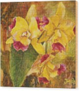 Yellow Orchids Acrylic Wood Print