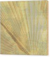 Yellow Palm Frond Lh Wood Print