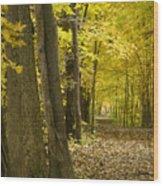 Yellow Path Wood Print