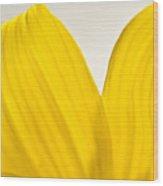Yellow Petals Wood Print by Ryan Kelly
