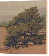 Yellow Pine Wood Print