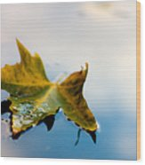 Yellow Plus Blue Equals Edge Wood Print