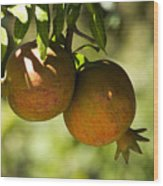 yellow Pomegranate Wood Print by Atul Daimari