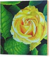 Yellow Wood Print by Ramneek Narang