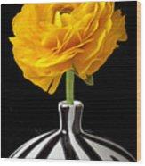 Yellow Ranunculus In Striped Vase Wood Print