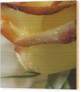 Yellow - Red Rose Wood Print