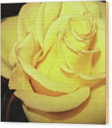 Yellow Rose For Friendship Wood Print