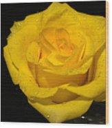Yellow Rose  - Friendship,joy,good Health Wood Print