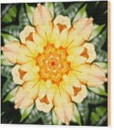 Yellow Rose Kaleidoscope  Wood Print
