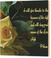 Yellow Rose Ps.7 V 17 Wood Print
