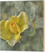 Yellow Rose With Old Marbel Texture Background Wood Print