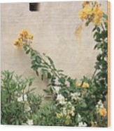 Yellow Roses And Tiny Window At Carmel Mission Wood Print