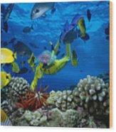 Yellow Scuba Diver Wood Print