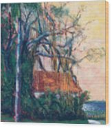 Yellow Sky At Edison Winter Estate Wood Print