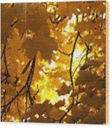 Yellow Star Wood Print