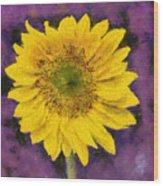 Yellow Sunflower Wood Print