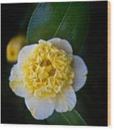 Yellow Tenderness Wood Print