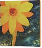 Yellow Treat Wood Print