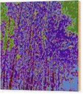 Yellow Trees D5 Wood Print
