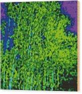Yellow Trees Dd5b Wood Print
