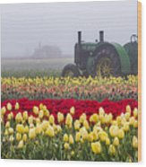 Yellow Tulips And Tractors Wood Print