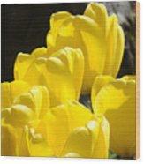 Yellow Tulips Floral Art Prints Nature Garden Wood Print