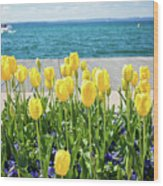 Yellow Tulips Near Lake Wood Print