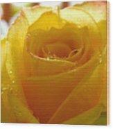Yellow Valentine Roses - 4 Wood Print