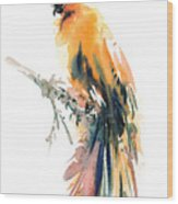 Yellow Wild Bird Wood Print