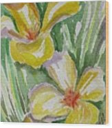 Yellow Wild Flowers II Wood Print