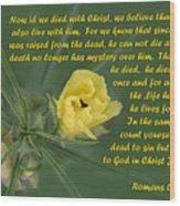 Yellow Wildflower - Romans Wood Print