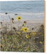 Yellow Wildflowers- Art By Linda Woods Wood Print