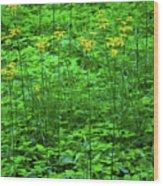 Yellow Wildflowers Wood Print