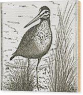 Yellowlegs Shorebird Wood Print
