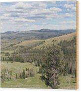 Yellowsotne Panorama Wood Print