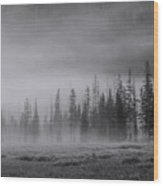 Yellowstone 148 Wood Print