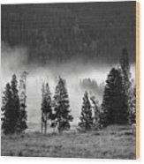 Yellowstone 157 Wood Print