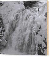Yellowstone 43 Wood Print