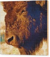 Yellowstone Buffalo Wood Print