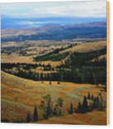 Yellowstone Wood Print by Carrie Putz