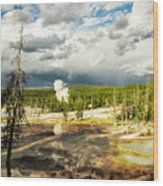 Yellowstone Colors #3 Wood Print