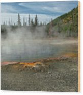 Yellowstone Colors #5 Wood Print