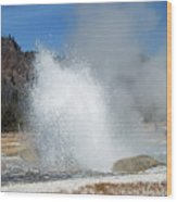 Yellowstone Features  Wood Print