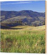 Yellowstone Landscape 3 Wood Print