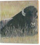 Yellowstone Loner Wood Print