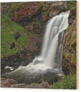 Yellowstone Moose Falls Wood Print