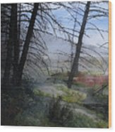 Yellowstone National Park 4 Wood Print
