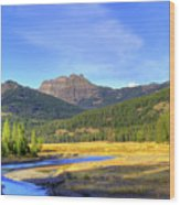 Yellowstone National Park Landscape Wood Print